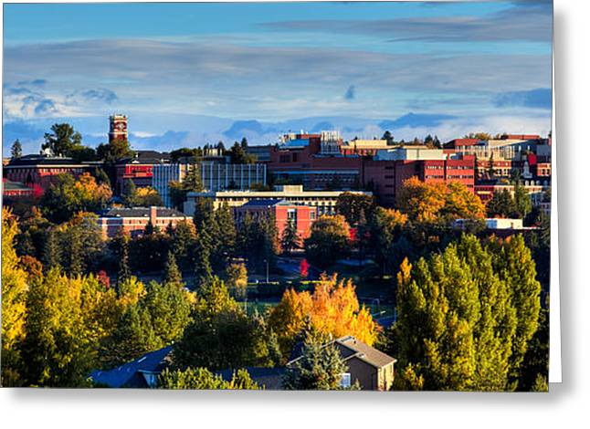 Fall Scenes Greeting Cards - Washington State University in Autumn Greeting Card by David Patterson
