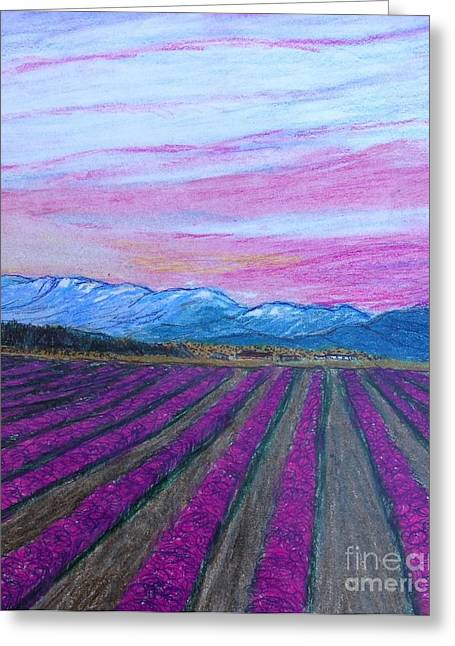 Vineyard Landscape Mixed Media Greeting Cards - Washington Vineyard  Greeting Card by Christine Degyansky