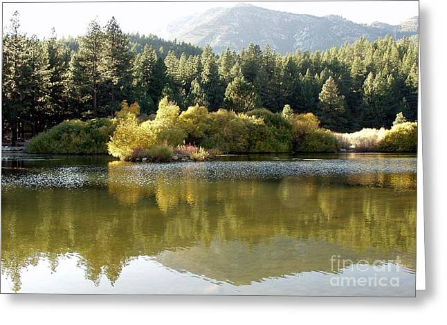 Fall Scenes Greeting Cards - Washoe Valley Greeting Card by Carol Sweetwood