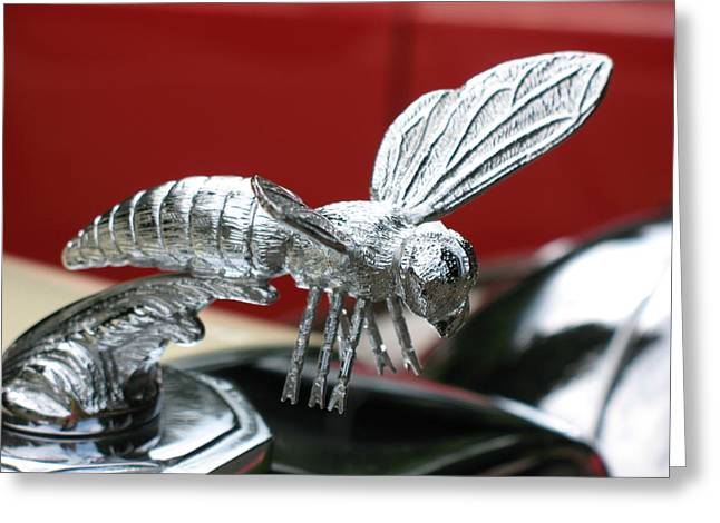 Vintage Hood Ornaments Paintings Greeting Cards - Wasp Greeting Card by Elaine Booth-Kallweit