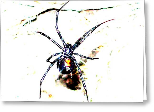 Black Widow Greeting Cards - Watch Out Greeting Card by Joseph Werlhof