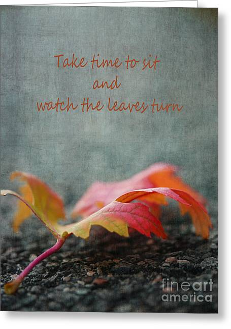 Peaceful Images Greeting Cards - Watch the Leaf Turn Greeting Card by Irina Wardas