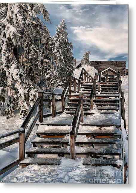 Wooden Stairs Greeting Cards - Watch Your Step Greeting Card by Lois Bryan