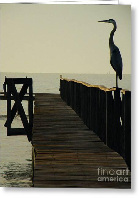 Heron Greeting Card Greeting Cards - Watchful Eyes Greeting Card by Joe Jake Pratt
