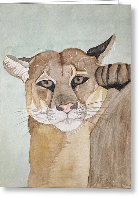 Lioness Drawings Greeting Cards - Watchful Greeting Card by Melanie Schneider