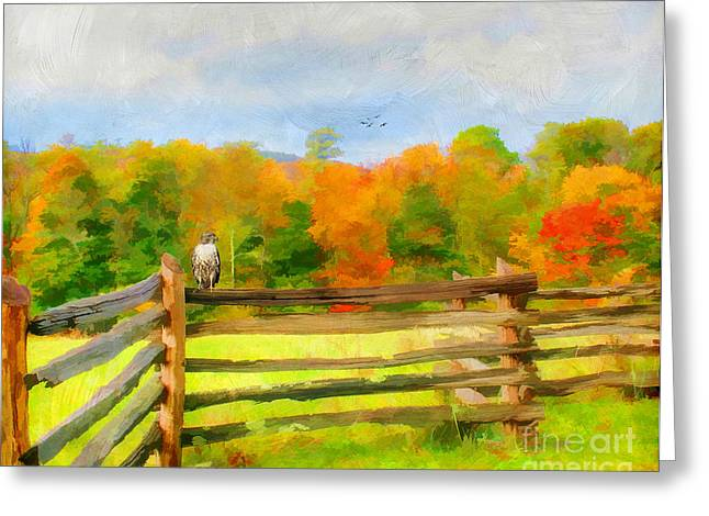 Split Rail Fence Greeting Cards - Watching Autumn Greeting Card by Darren Fisher
