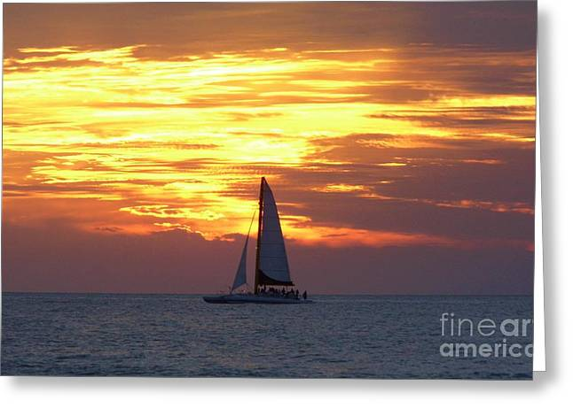Sailboats In Water Greeting Cards - Watching Fire In The Sky Greeting Card by D Hackett