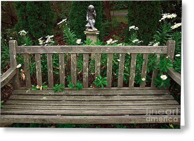 Watching Over Greeting Cards - Watching over the Bench Greeting Card by John Rizzuto