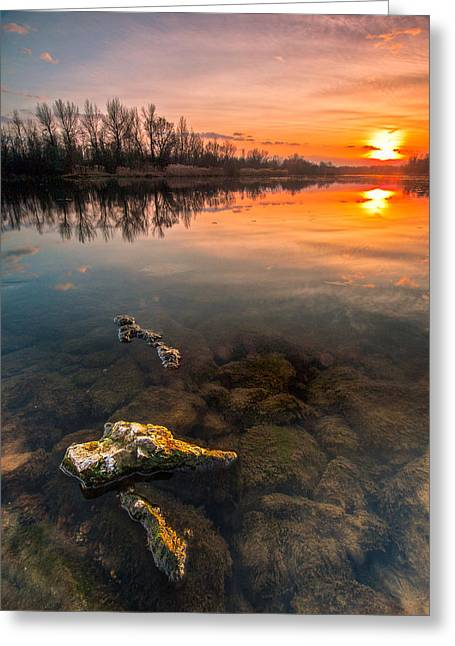 Warm Greeting Cards - Watching sunset Greeting Card by Davorin Mance