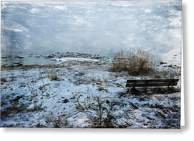 Outlook Greeting Cards - Watching the Horizon Greeting Card by Randi Grace Nilsberg