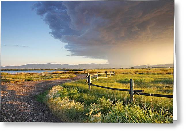 Moyers Greeting Cards - Watching the Storm Greeting Card by Dana Moyer