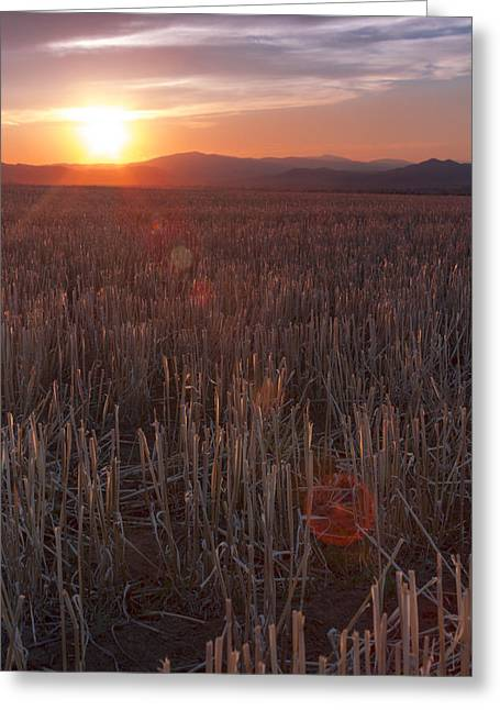 Moyers Greeting Cards - Watching the sun go down Greeting Card by Dana Moyer