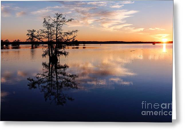 Martin County Greeting Cards - Watching the Sunset at BA Steinhagen Lake Martin Dies Jr. State Park - Jasper East Texas Greeting Card by Silvio Ligutti