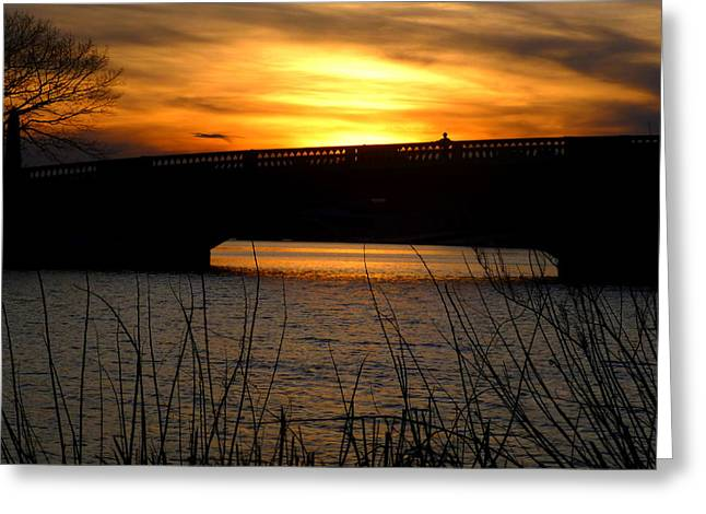 Charles River Greeting Cards - Watching the sunset from the John Weeks Bridge Greeting Card by Toby McGuire