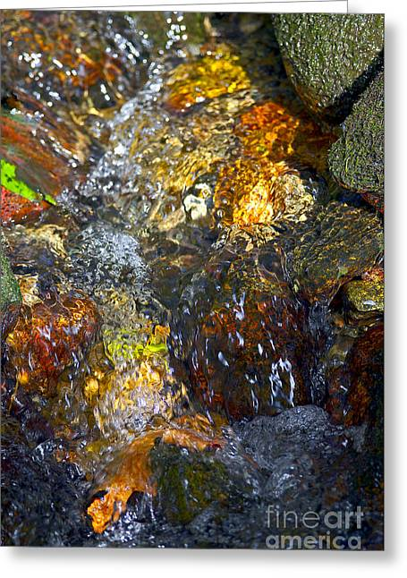 Water In Creek Greeting Cards - Water Abstract 2 Greeting Card by Sharon  Talson