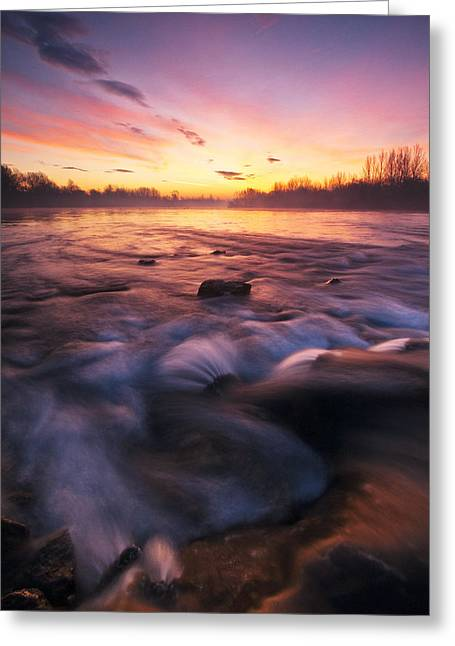 Warm Landscape Greeting Cards - Water Claw Greeting Card by Davorin Mance