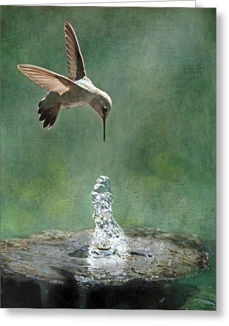 Hovering Greeting Cards - Water Dance Greeting Card by Angie Vogel