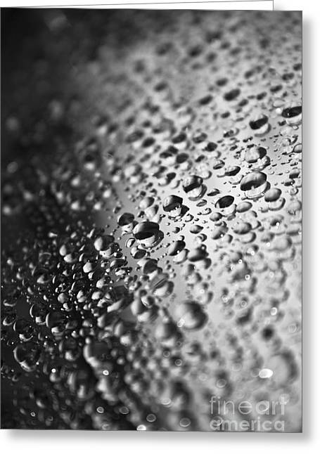 Stainless Steel Greeting Cards - Water Drops On Surface Greeting Card by Dan Radi