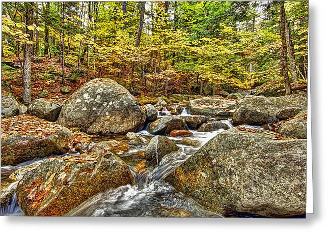 Water Fall In New Hampshire Greeting Card by James Steele