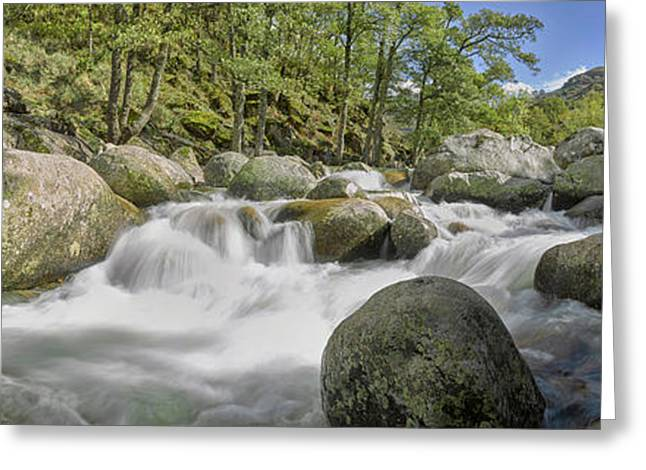 Water Flowing From Rocks, River Jerte Greeting Card by Panoramic Images