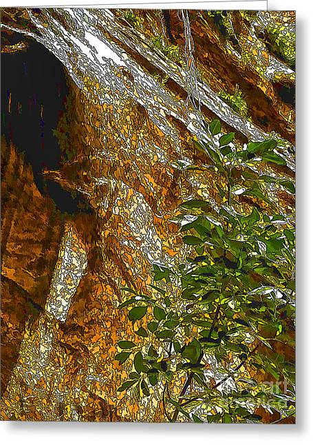 Overhang Digital Art Greeting Cards - Water From Rock-DP Greeting Card by Nancy Marie Ricketts