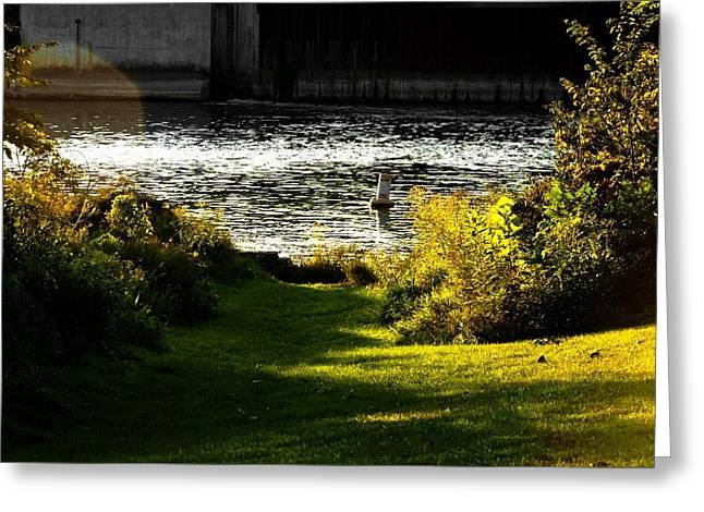 Joeseph Greeting Cards - Water Front Trail Greeting Card by Amy Lingle