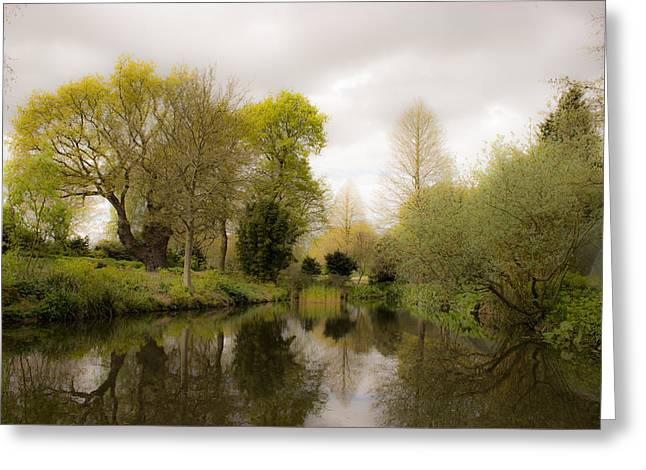 Water Gardens Greeting Cards - Water Garden Beth Chatto Essex Greeting Card by Martin Newman
