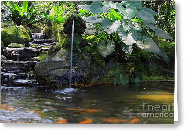 Water Garden Greeting Cards - Water Garden Greeting Card by Charline Xia