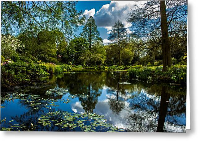 Calm Water Reflection Greeting Cards - Water Garden Greeting Card by Martin Newman