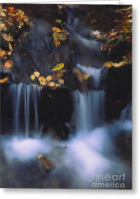 Water Flowing Greeting Cards - Water Gushing Greeting Card by Art Wolfe