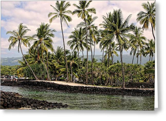 Clounds Greeting Cards - Water Inlet with Palms Greeting Card by Linda Phelps