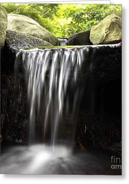B.c. Greeting Cards - Water Is Life Greeting Card by Nancy Harrison