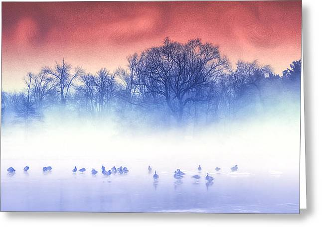 Kellice Greeting Cards - Water Life Land and Sky Greeting Card by Kellice Swaggerty