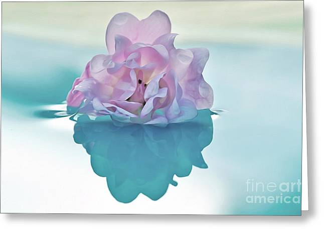Sunlight On Flowers Greeting Cards - Water Light and Reflections Greeting Card by Kaye Menner