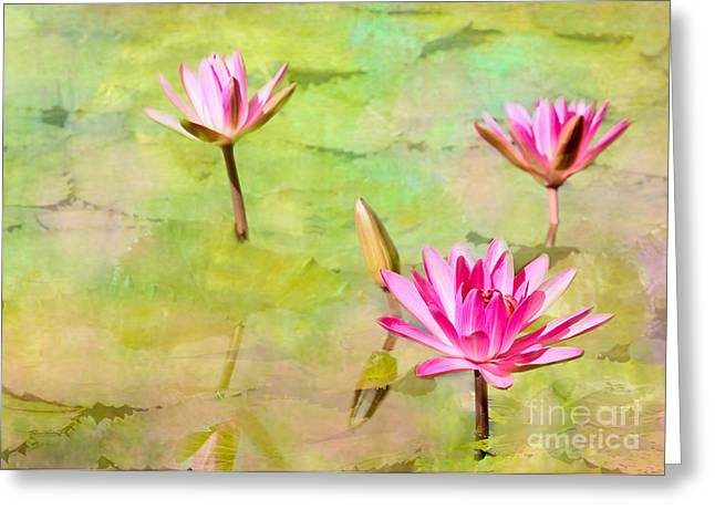 Florida Flowers Greeting Cards - Water Lilies Inspired by Monet Greeting Card by Sabrina L Ryan