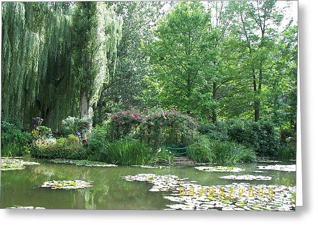 James Dolan Greeting Cards - Water Lilies Greeting Card by James Dolan