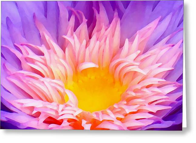 Water Garden Digital Art Greeting Cards - Water Lily Close-Up Greeting Card by Amy Vangsgard