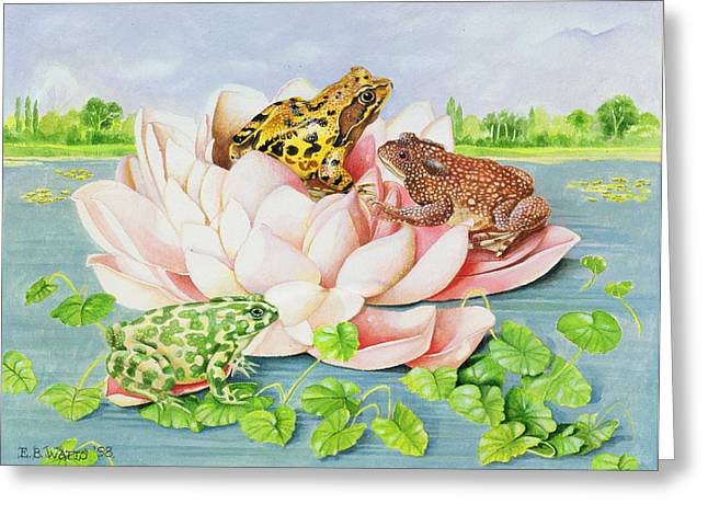 Out-dated Greeting Cards - Water Lily Greeting Card by EB Watts