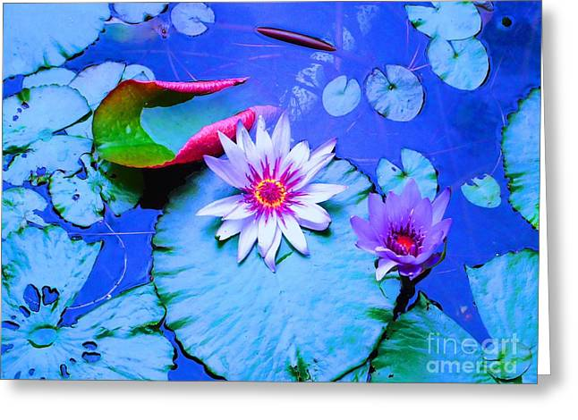 Blue Green Water Greeting Cards - Water Lily I Greeting Card by Ann Johndro-Collins
