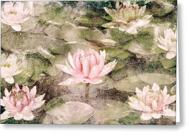 Texture Floral Pyrography Greeting Cards - Water Lily Greeting Card by Jelena Jovanovic