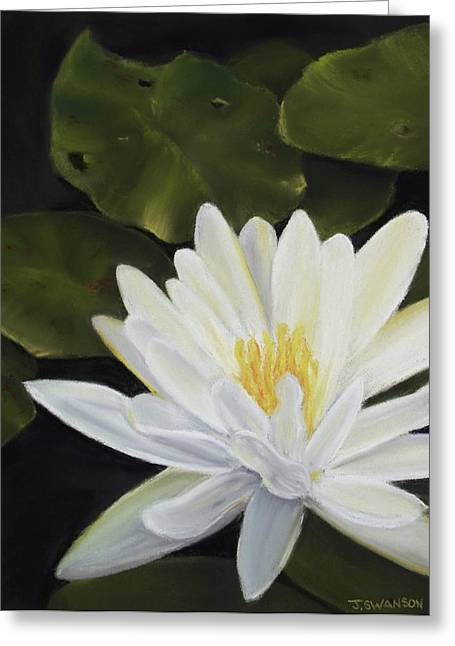 Lilly Pads Pastels Greeting Cards - Water Lily Greeting Card by Joan Swanson