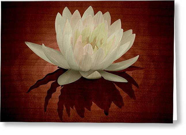 Water Lily Marquetry Greeting Card by Zsolt Sesztak