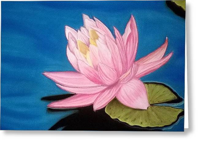 Reflection In Water Greeting Cards - Water Lily Greeting Card by Mojgan Jafari