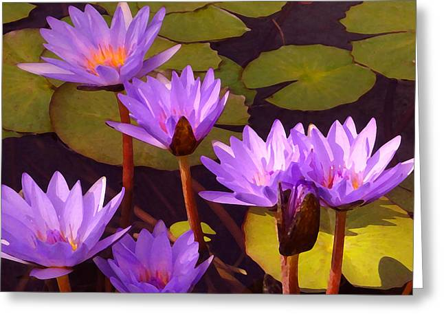 Water Garden Digital Art Greeting Cards - Water lily Pond Greeting Card by Amy Vangsgard