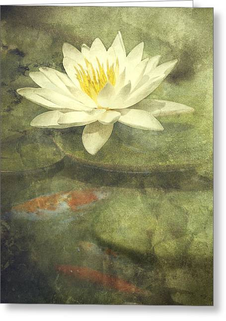 Blossoming Greeting Cards - Water Lily Greeting Card by Scott Norris