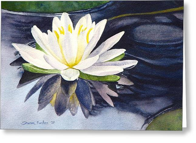 Lilly Pads Greeting Cards - Water Lily Greeting Card by Sharon Farber