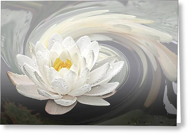 White Waterlily Greeting Cards - Water Lily Whirlpool Greeting Card by Gill Billington