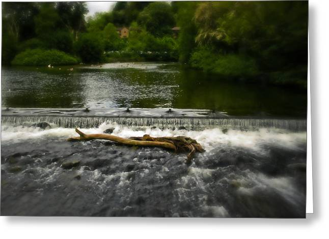 Garden Scene Digital Art Greeting Cards - Water Logged In Peak District Greeting Card by Michael Braham