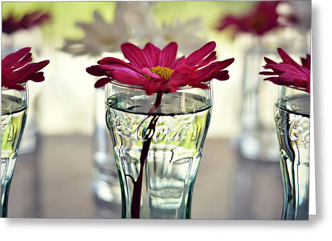 Water Lovers Greeting Card by Laura Fasulo