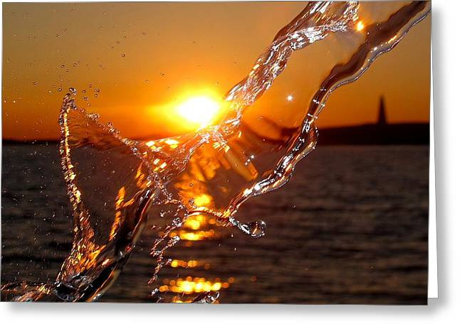 Beauty Mark Greeting Cards - Water Mark Greeting Card by Donnie Freeman